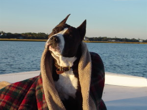 Major on Boat